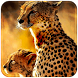 Golden Leopard King by New themes