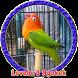 Kicau Lovebird Juara MP3
