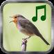 Bird Sounds by Beautiful Ringtones
