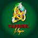 Corporación Carriel Mágico by EstrategiaWeb.Co