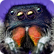Spider Vision Camera Effect by Green Leaf Productions