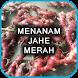 Menanam Jahe Merah Unggul by Nietzhee