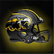 WF Nighthawks Football by DesignWorks Group
