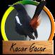 Kacer Gacor Komplit by amily corp