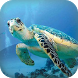 Sea Turtle Live Wallpaper by Cantora Design