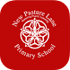 New Pasture Lane Primary by Pixelhead Creative Ltd