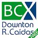 BCX DOWNTON RIESGO DE CAÍDAS by Biocapax Technologies