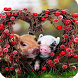 Little Pig Wallpaper by Empire Wallpapers