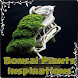 Bonsai Plants Inspirations by ZackDev