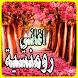 اغاني رومانسية بدون انترنت by devappma02