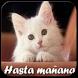 Hasta Mañana by New Generation Apps Android