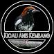Kicau Anis Kembang Master by penodev
