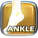 PT and OT Helper: Ankle by Cognatus Innovations, LLC