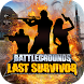 Battlegrounds: Last Survivor by InsideBtn Studio