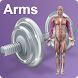 Daily Arms Video Workouts by Filipp Kungur