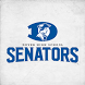 Dover High School Senators by SuperFanU, Inc