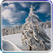 Winter Video Live Wallpaper by Cyber Apps