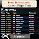 Senai Airport Flight Time