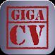 giga-cv My tailor-made resume by Patrice BARBAROUX