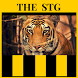 Soy del Tigre - The Strongest by FutbolApps by AMAwords.com