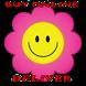 Flower Box SA