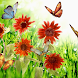 Butterfly Flower Themes by artur