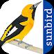 All Birds Ecuador - A Sunbird Field Guide