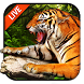 3D Tiger Live Wallpaper 2018 by Weather Widget Theme Dev Team
