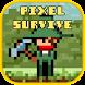 Pixel Survival Adventure by barakuda