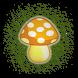Pick Mushroom by TMTPRO