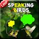 Speaking Bird Live Wallpaper by Super Kool Apps