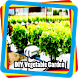 DIY Vegetable Garden by ackerman