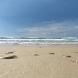 Ocean Waves Video Wallpaper by Lewiski