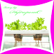 Hydroponic Farm Ideas by bintangapp