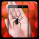 Spider On Hand Camera Prank by toprankdev