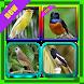 101+ Suara Burung Indah by paijo dev