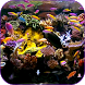 Aquarium Video Wallpaper by ComfyDj