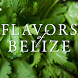 Flavors of Belize by Shoutem, Inc.