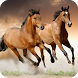 Horse Live Wallpaper by GlobalWallpapers