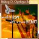 Bishop D. Oyedepo Sermons by Ekklesia