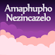 ZULU Meaning Dreams Dictionary by Red Apps