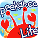 Peekaboo Ocean Lite by Touch & Learn