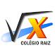 Colégio Raiz by wetoksoft.com.br