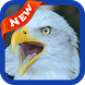 Eagle Wallpaper by lucas17