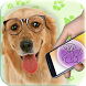 Translate to dog's language by AppsNewEra