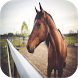 Horse Sounds by mistic.app