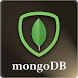 Learn MongoDB by iSecureGadgets Tech Solutions Pvt Ltd