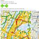 Traffic by Brooklyn Marathon
