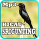 Kicau Srigunting Mp3 by iky94 studio