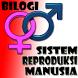 Sistem Reproduksi Manusia by Fadly Nugraha